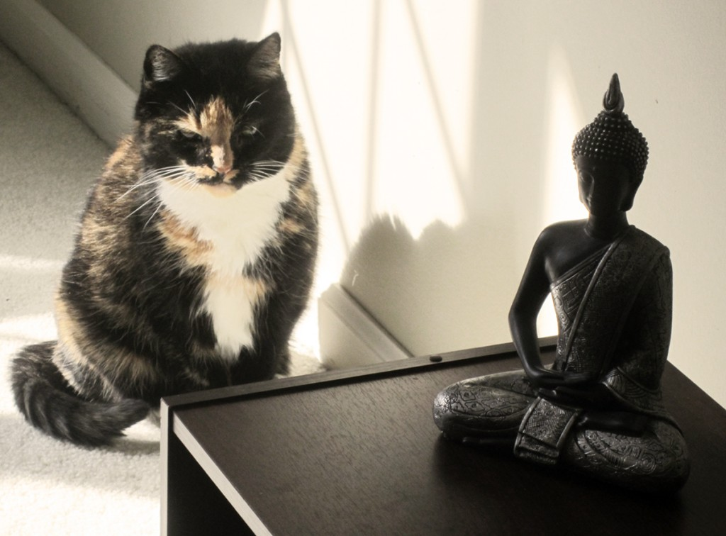 February 11th. Mia with the Buddha.