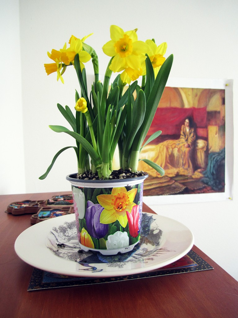 April 5th: Flowers.